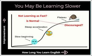 Learning Plateau you may be learning sloweror discouraged