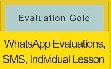 Basic Evaluations Gold